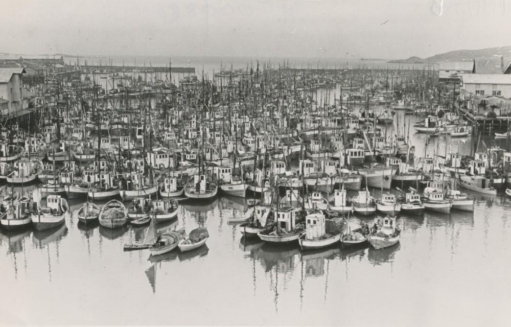 Nordre Våg 1955