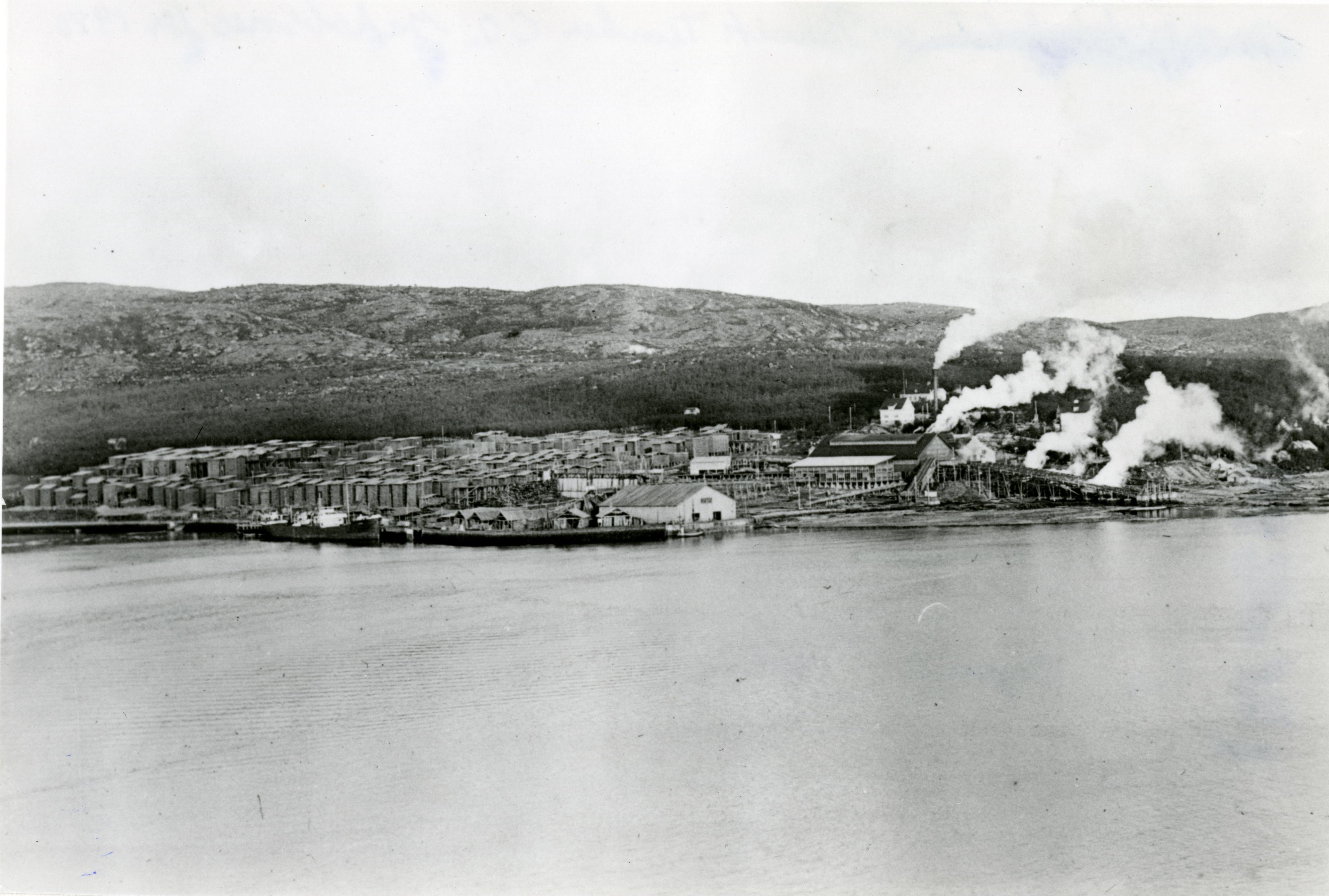 Fotokort: Oversikt over Pasvik Timber.