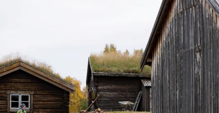 Sommertilbud ved Varanger museum
