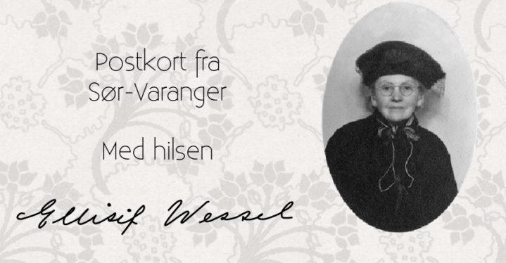 Postkortpakke med 5 utvalgte Ellisif Wessel motiver.